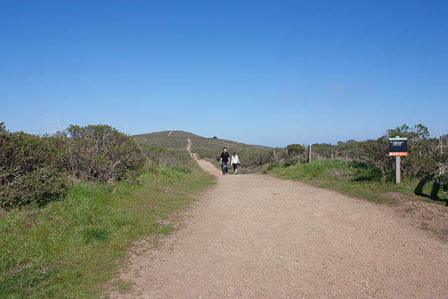 Hiking Coastal Fire Trail