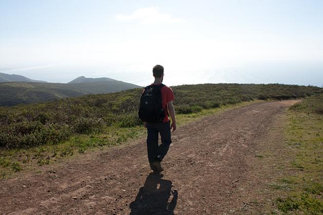 Hiking Coastal Fire Trail